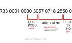 IBAN Numarasından Şube Kodu Öğrenme Detaylı Anlatım [No Çözme]