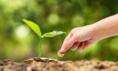 Tarım Kredisi Veren Bankalar
